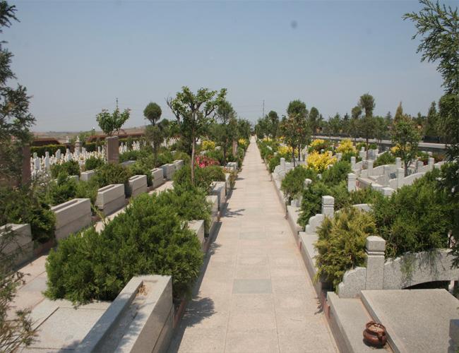 山东青岛即墨龙山公墓
